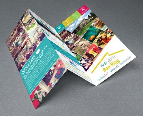 n Brochure giá rẻ tại HCM